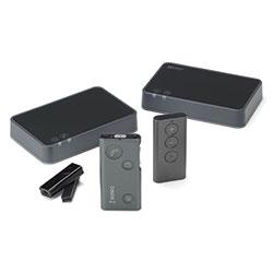 Sonic Soundgate 2/3 remote
